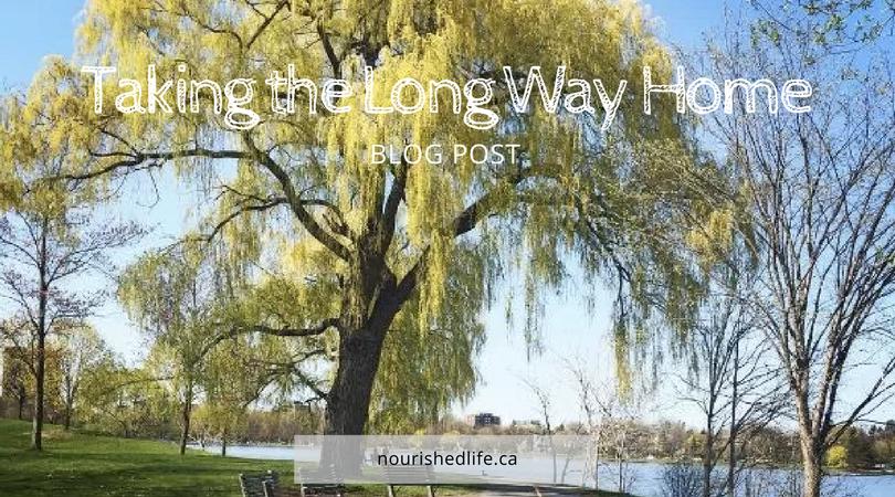 Taking the Long WayHome